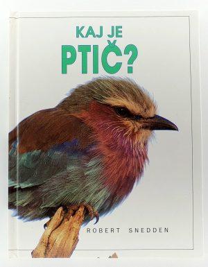Kaj je ptič?